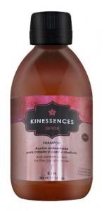 Shampoo Antioxidante Sin Sulfatos X300ml Kinessences